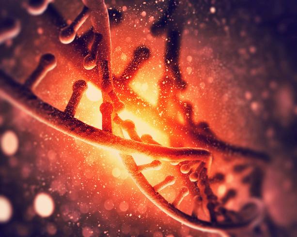 Molecular Sciences